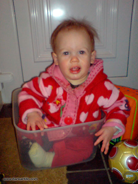 Willow in a Tupperware container (Sony Ericsson K800i)