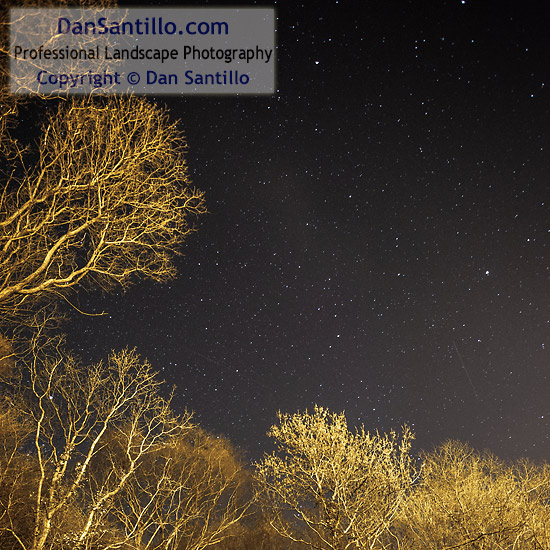 The stars from my back garden