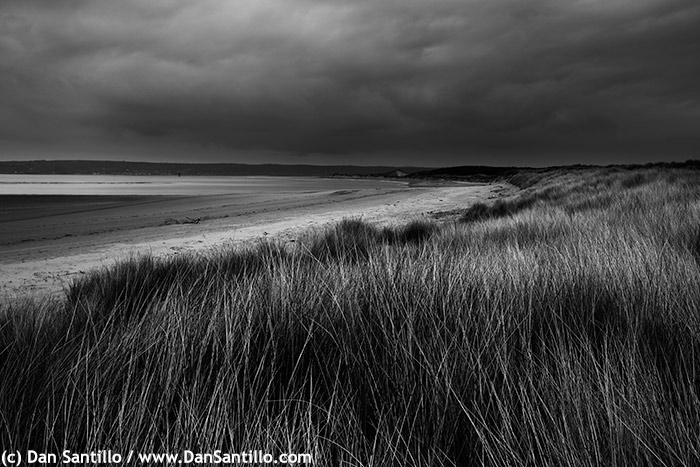 Whiteford Sands