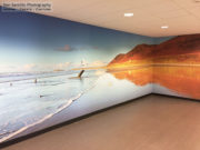 My Photo on Wallpaper in Swansea University