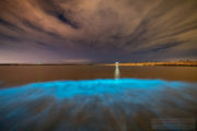 Bioluminescent Plankton at Aberavon, Wales