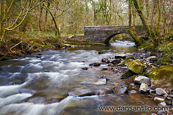 Cwm Du Glen, Upper Clydach River, Pontardawe, Swansea Valley, Wales
