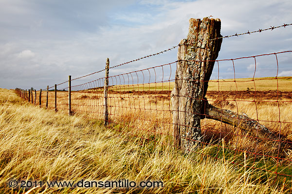 Fence in the Brecons
